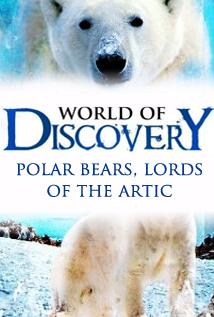 Image of Season 1 Episode 11 Polar Bears, Lords of the Arctic