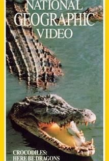 Image of Crocodiles: Here Be Dragons