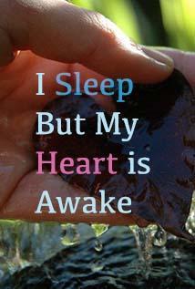 Image of I Sleep But My Heart is Awake