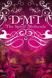 Image of DMT: The Spirit Molecule