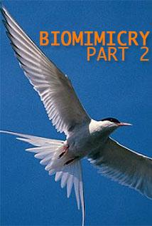 Image of Season 1 Episode 3 Biomimicry: Part 2
