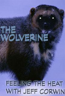 Image of Season 1 Episode 11 The Wolverine