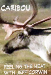Image of Season 1 Episode 1 The Caribou
