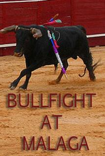 Image of Bullfight at Malaga