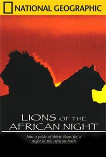 Image of Lions of the African Night