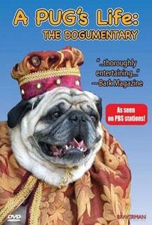 Image of A Pug's Life